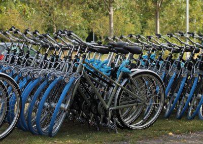 Fahrradverleih am Cospudener See